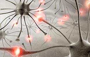 Accessible subtle epilepsy of Epilepsy